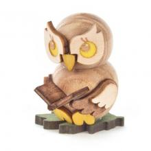 Owl child with book