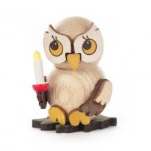 Owl child with candle