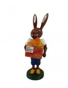 Bunny postman