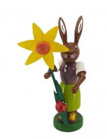 Rabbit with daffodil