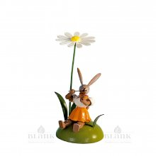 Blank easter bunny sitting with daisy and violin