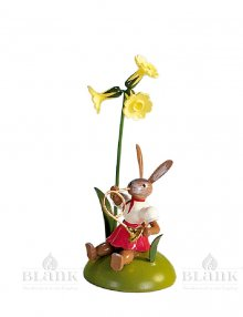 Blank easter bunny sitting with primrose and french horn